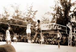 volley_team_k23_8