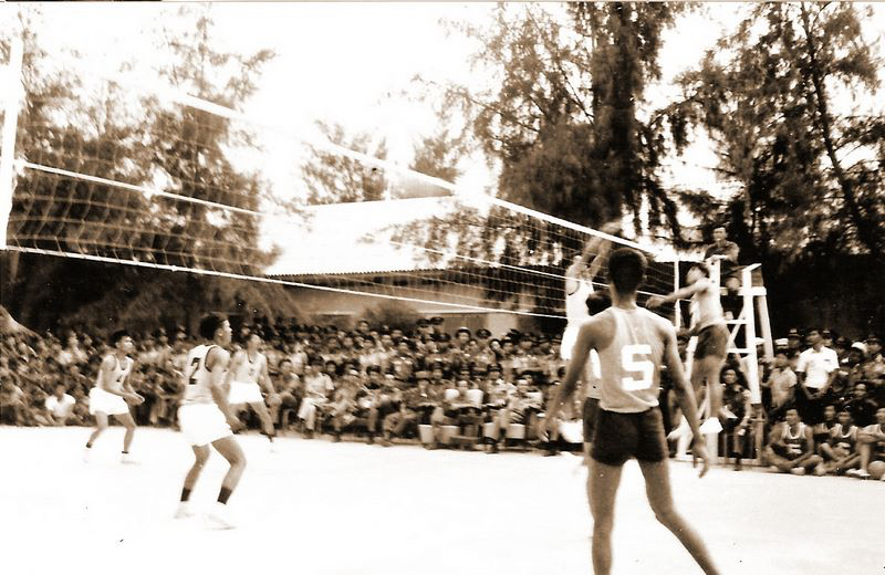 volley_team_k23_9