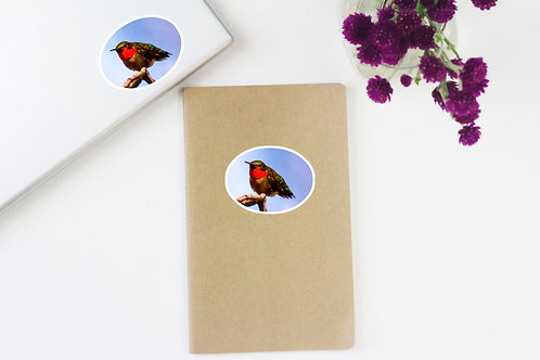 Ruby-throated Hummingbird Sticker