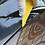 Thumbnail: Fönsterfärgverktygssats