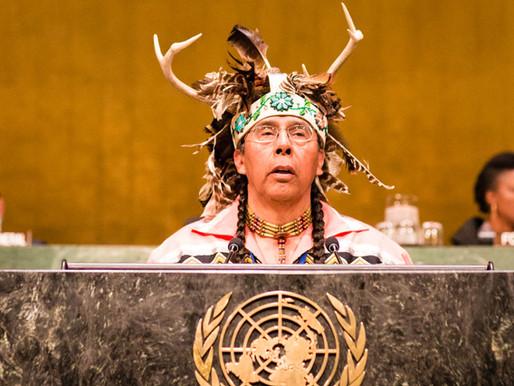 Livre determinação indígena: entre o direito internacional e a tragédia