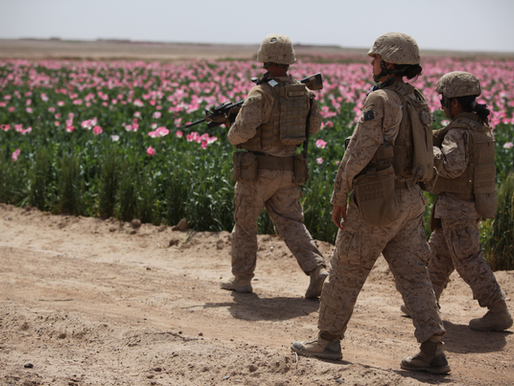 A produção de drogas em regiões de conflito: o ópio no Afeganistão