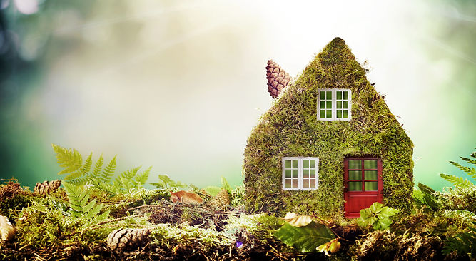 Eco friendly house concept with moss cov