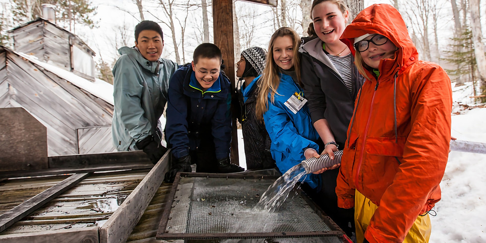 Maple Sugaring for High Schoolers