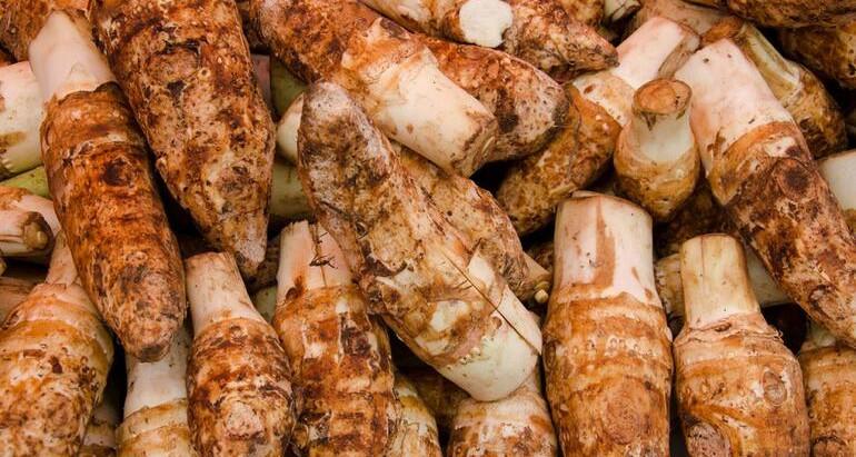 Kolokas (Taro Stew) Recipe