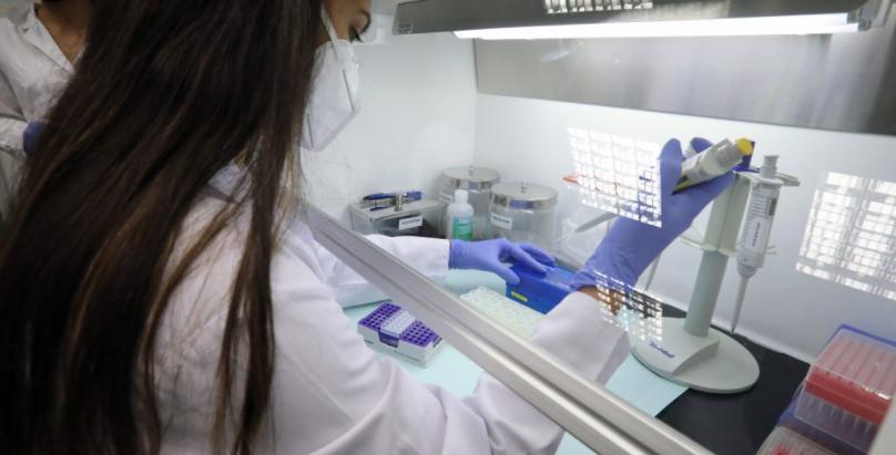 Coronavirus: No South Africa or Brazil variants found so far