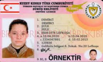 driving licence.jpg