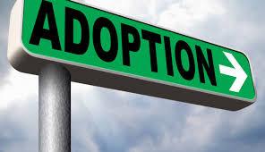 Adoption Credit