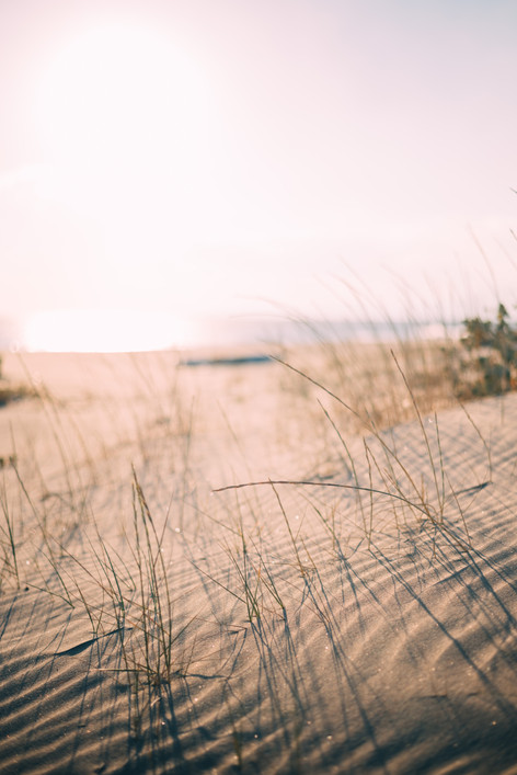the dune...