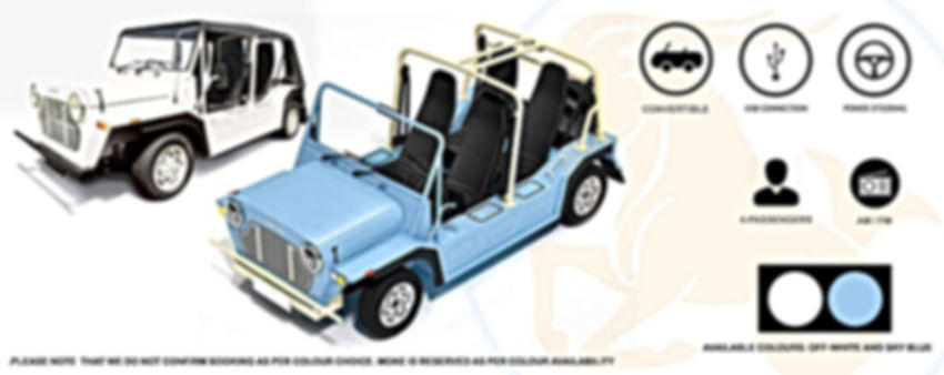 Capricorn Car Rental - Mini Moke