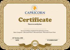 Capricorn Computer Services