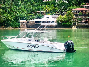 Taxi Boat and Sea Transfers