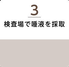 pcr-genchi3.png