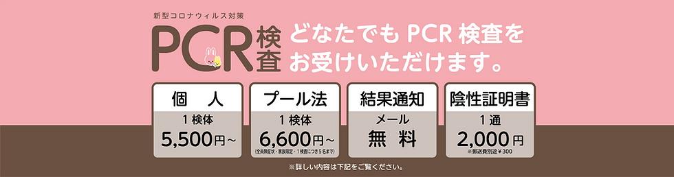 top01_PCR_20211004.png