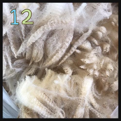 12 コリデール系