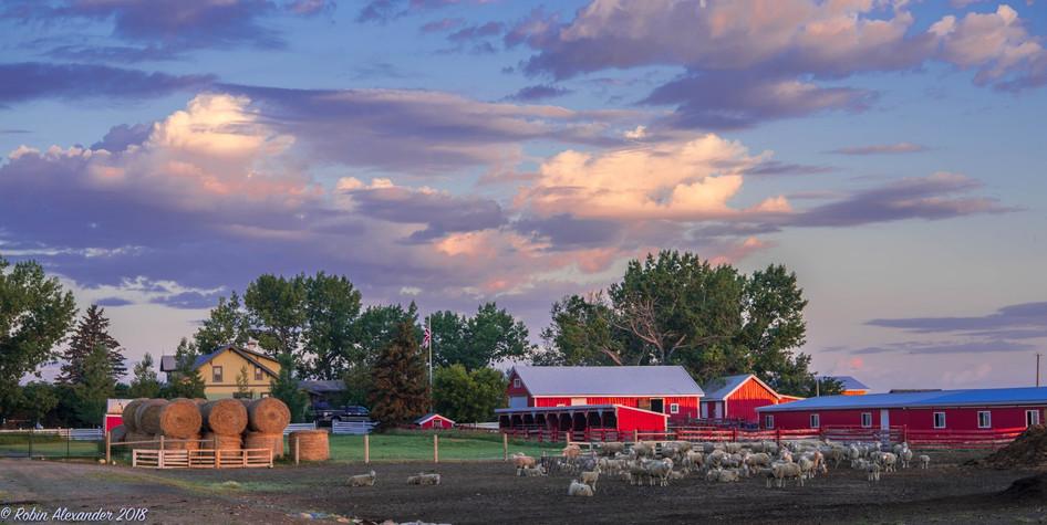 Alexander Ranch