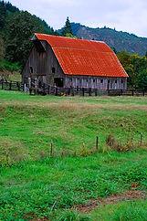 Elkton Area Barn.jpg