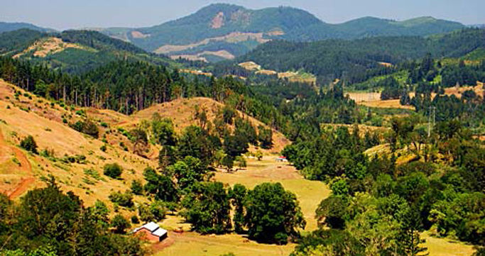 View of north county hills from Elkshead