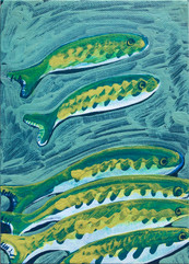 Little and Green Fish Study