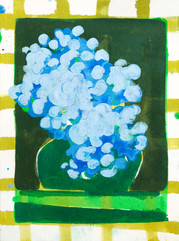 Blue Hydrangea Study