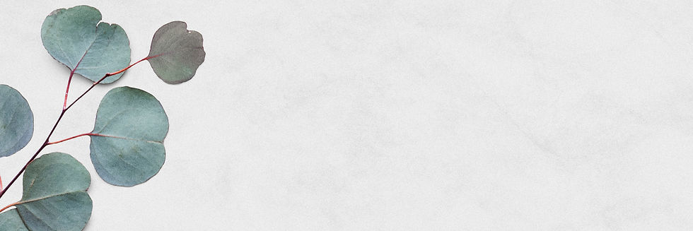 eucalyptus-silver-dollar-white-marble-banner.jpg