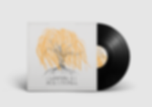 Vinyl Record Whippoorwill MockUp.png