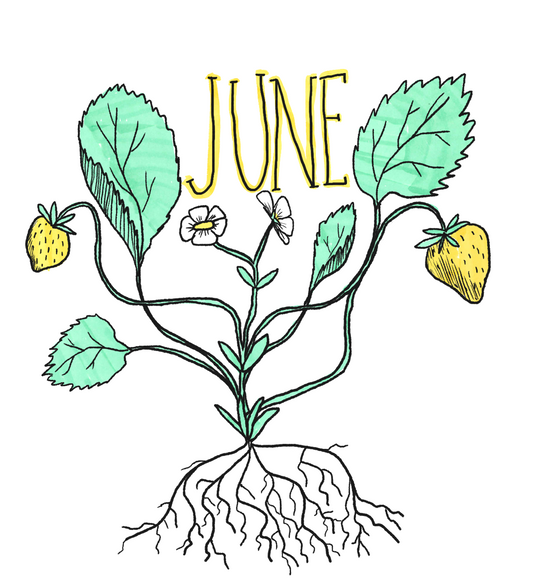 Juneberry.png