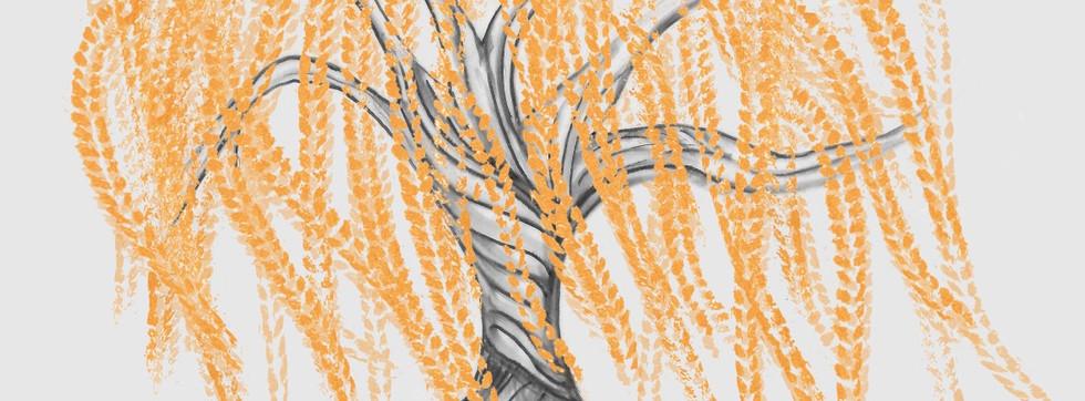Whippoorwill design.jpg