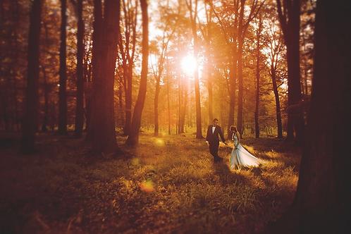 Séance photo de mariage 1h