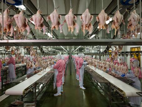Como e porque controlar o odor em indústrias alimentícias
