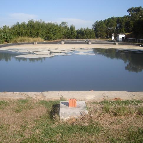 Biotecnologia para desassoreamento de tanques e lagoas