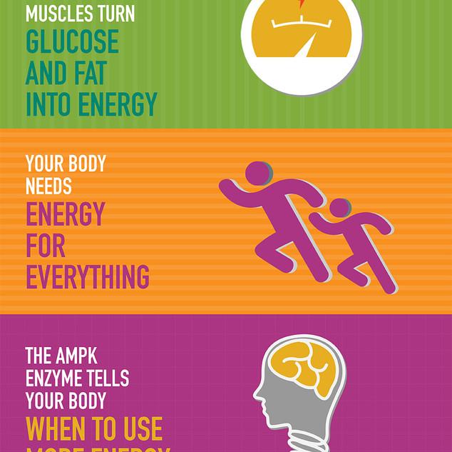 Scientific infographic