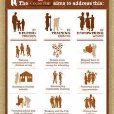 Cocoa Plan Infographic