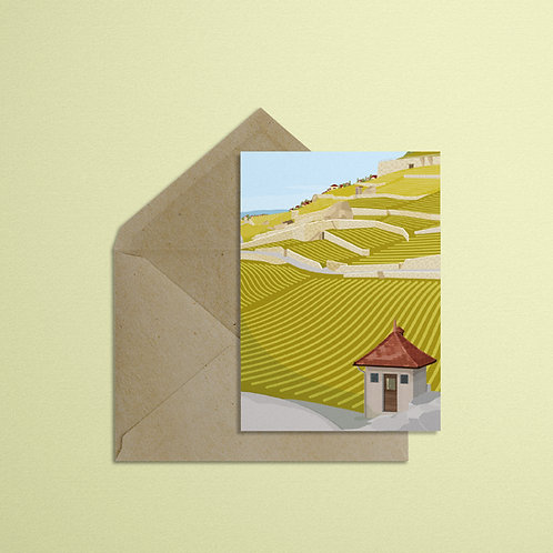 Jongny - Vineyards