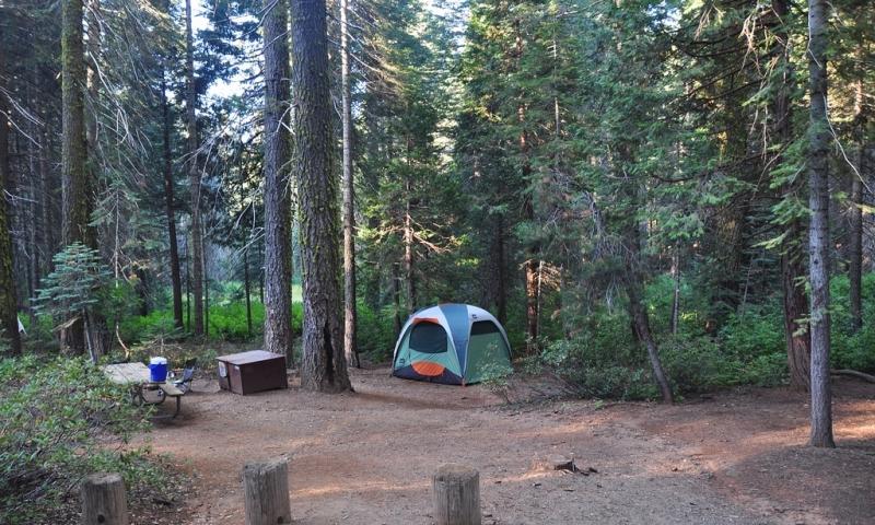 12266_iQhVA_Crane_Flat_Campground_lg