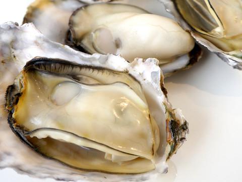 牡蠣びらき