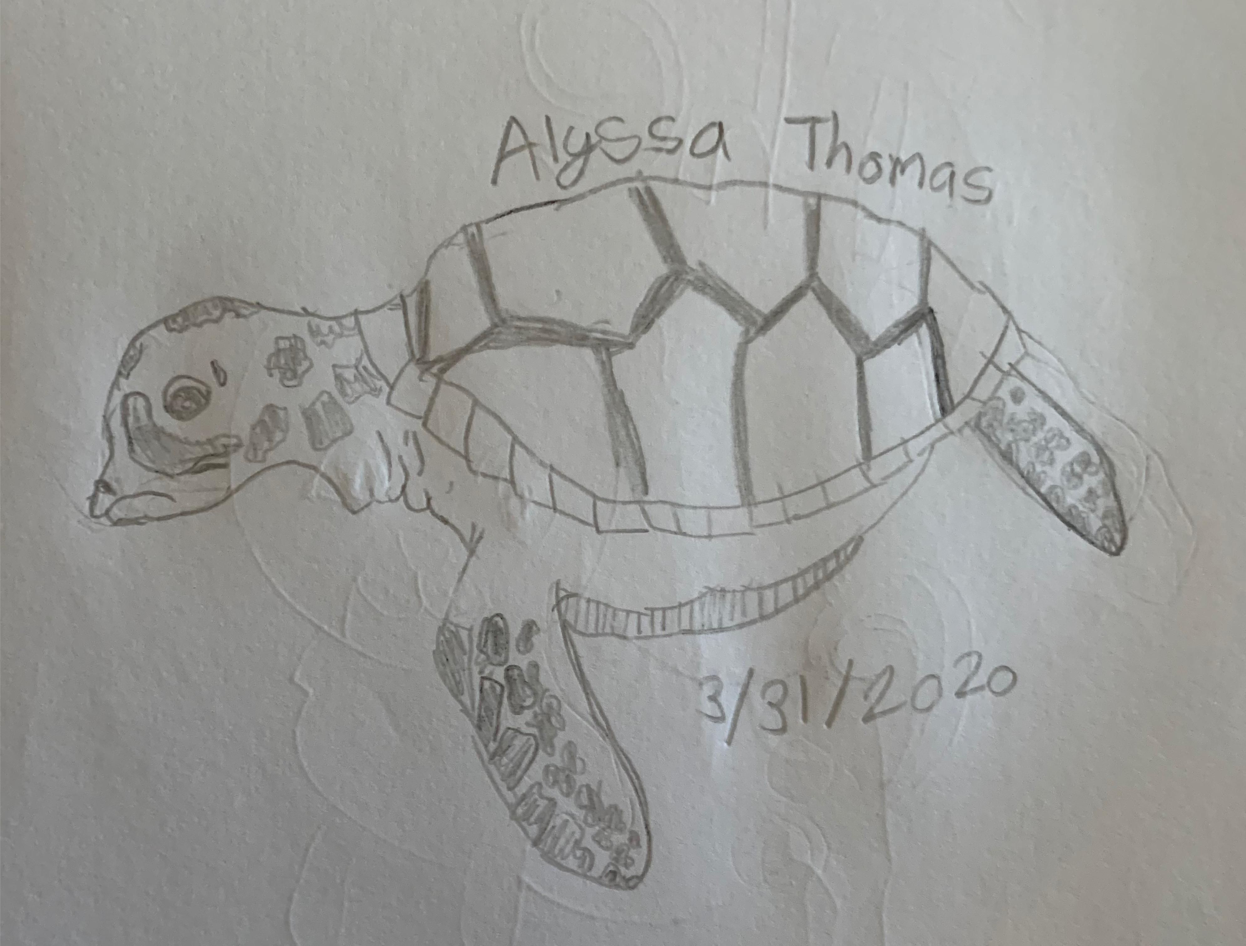 Alyssa T