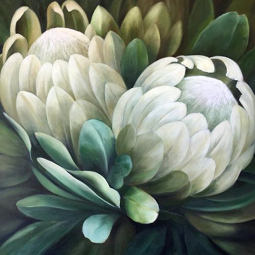 Wilma du Toit - White Proteas