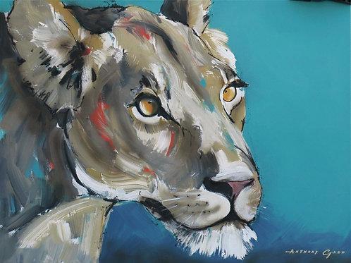 Anthony Gadd - Lion