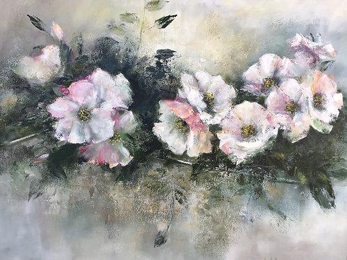Wilma du Toit - Open Roses
