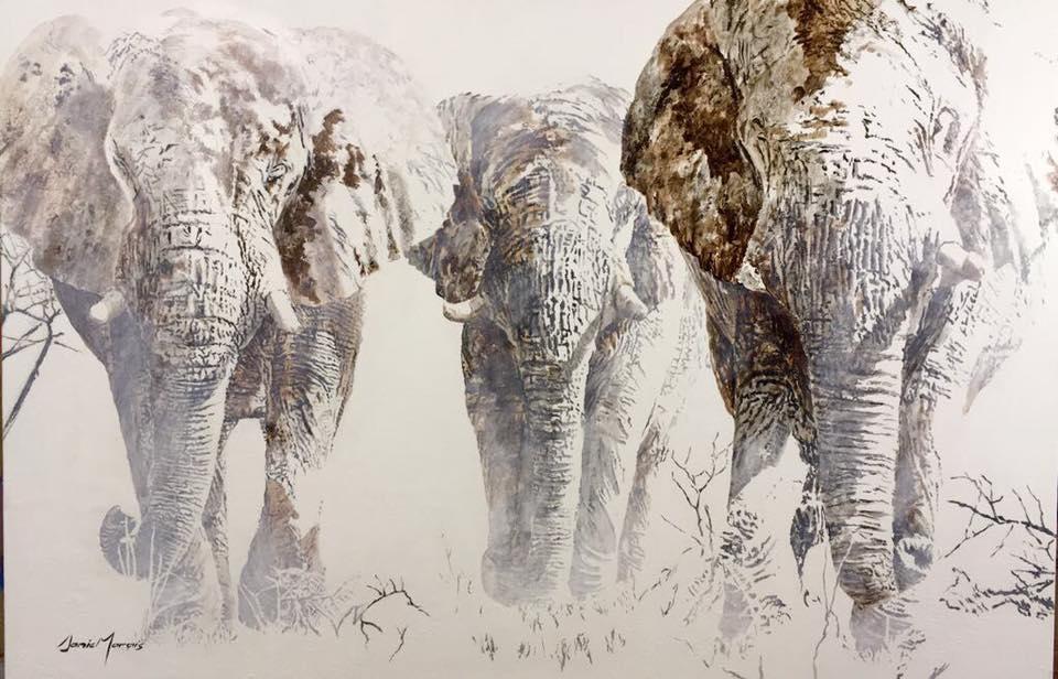 Danie Marais - Elephant Herd