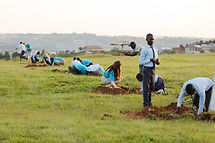Secondary school pupils planting trees at an Eco-Club