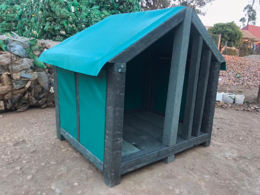 Our latest Eco-Products: Environmentally-friendly Dog Houses!