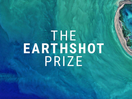 We've been nominated for the prestigious Earthshot Prize!