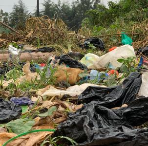 Litter and plastic waste in Uganda