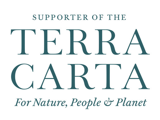 The Sustainable Markets Initiative and Terra Carta - We're now an official supporter