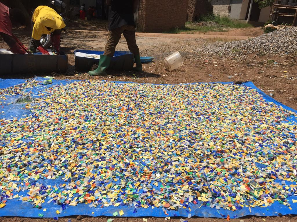 Granules of HPTE plastic bottle lids washed and laid out to try to make COVID-19 Face Shields