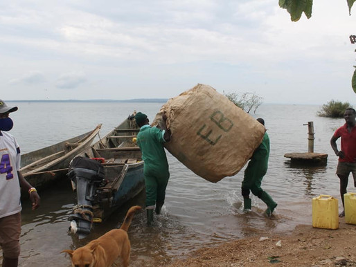 Continuing to clean up plastic waste from Lake Victoria