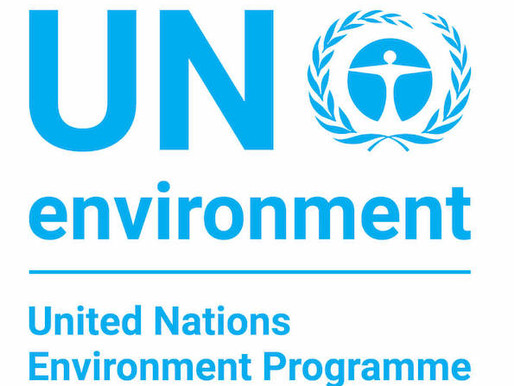 We've become accredited by the UN Environment Programme!