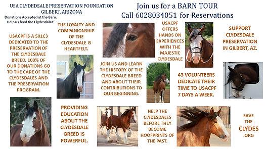 group barn tours 2021.jpg